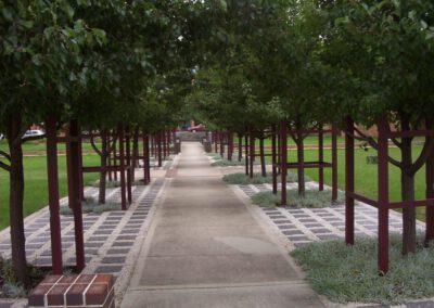 parramatta park