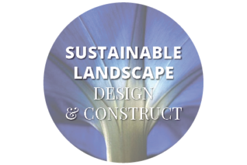 sustainable-circular-360×240