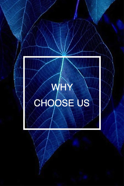 why-choose-us-Best-sydney-landscape-architect